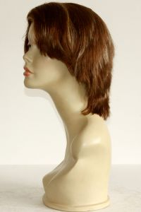 available for rent: zebra wig golden brown with blonde streaks human hair