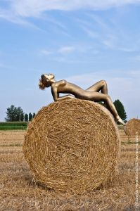 bodypainting_07_artistic-photography-naked-girl-gilded-on-bale-of-hay
